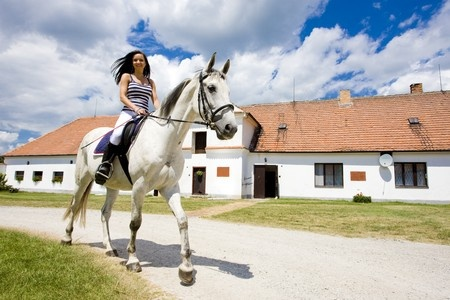 Palm Beach Gardens Equestrian Real Estate For Sale
