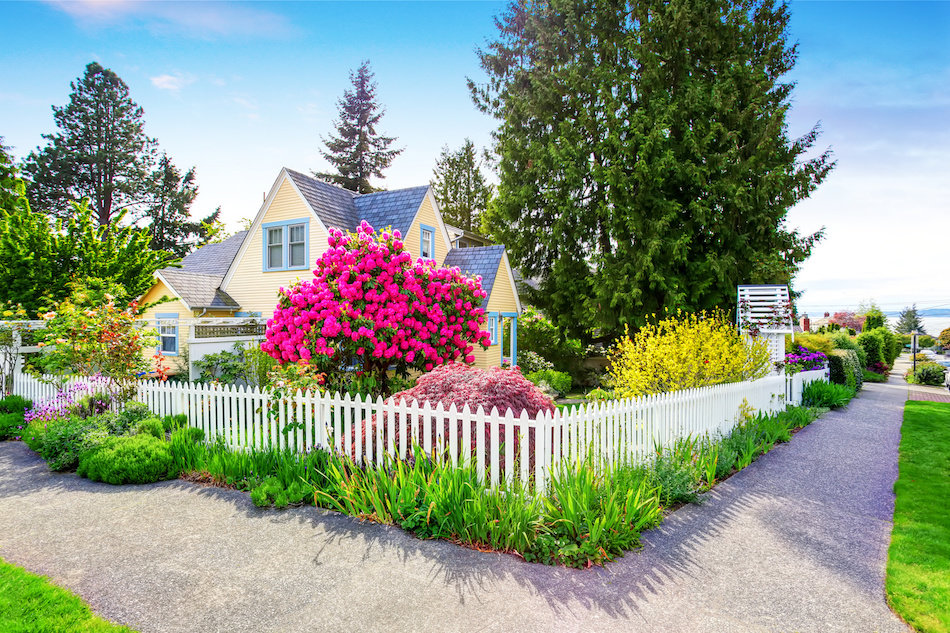 Good Curb Appeal Rules