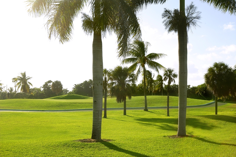 Golf Course Lots in Jupiter Palm Beach Area